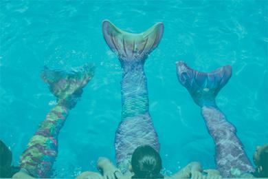 3137f6d7 Kuaki Mermaids